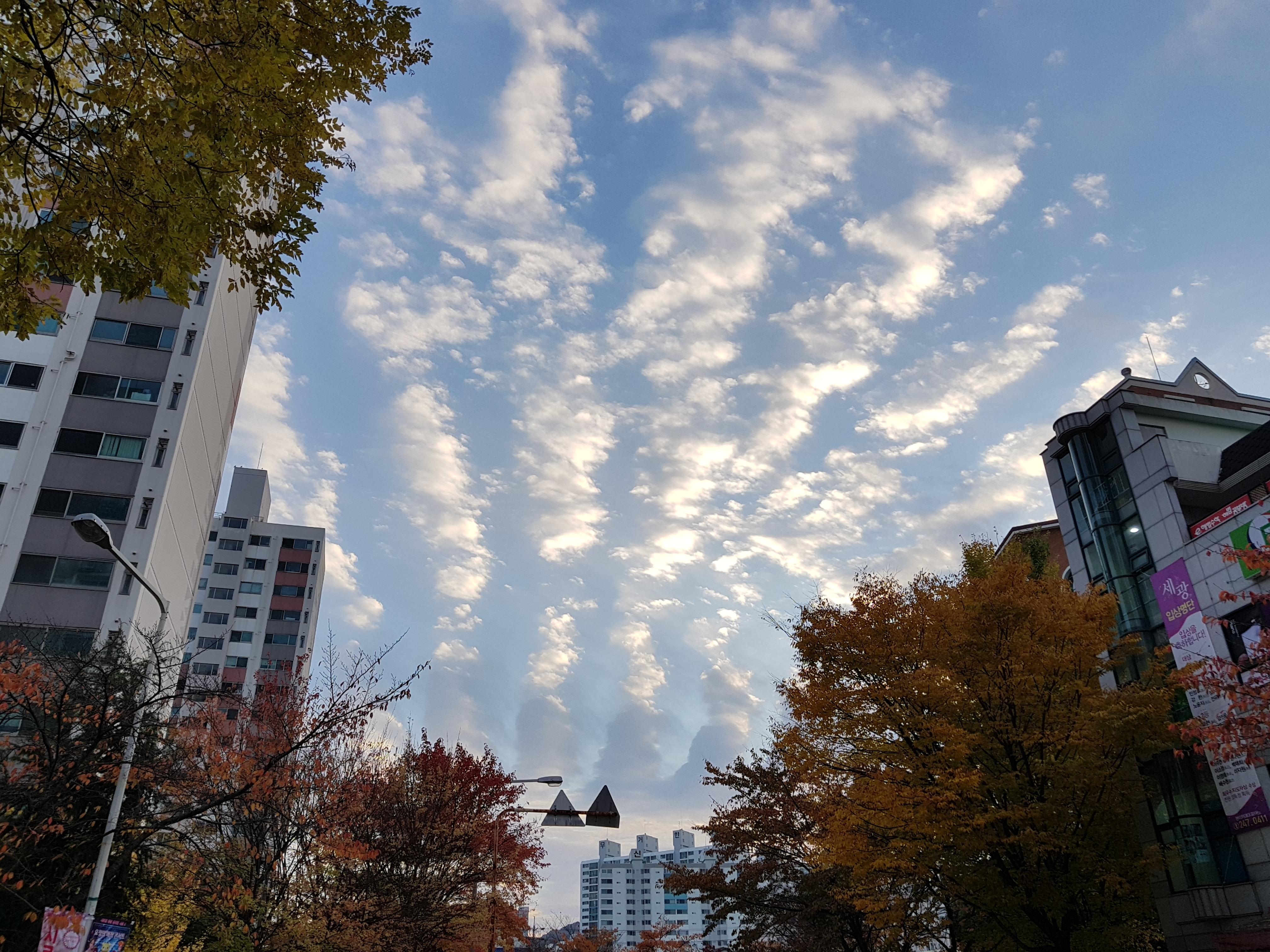 구름이 특이하네요!